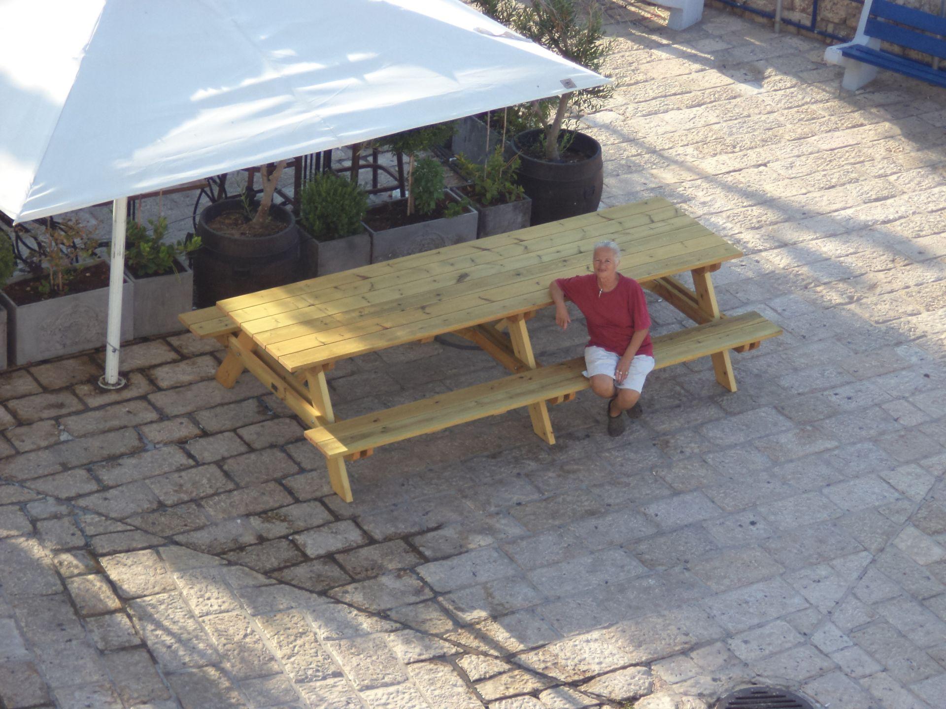 שולחן פיקניק ענק